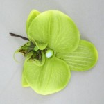 Lime Green Orchid Flower Hair Grip - OHF005