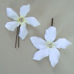 Stephanotis Hair Pins - Crystal - HFL069